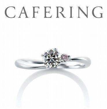 カフェリングのエンゲージリング(婚約指輪)ローズヒップデュー 静岡KITAGAWA Bridal