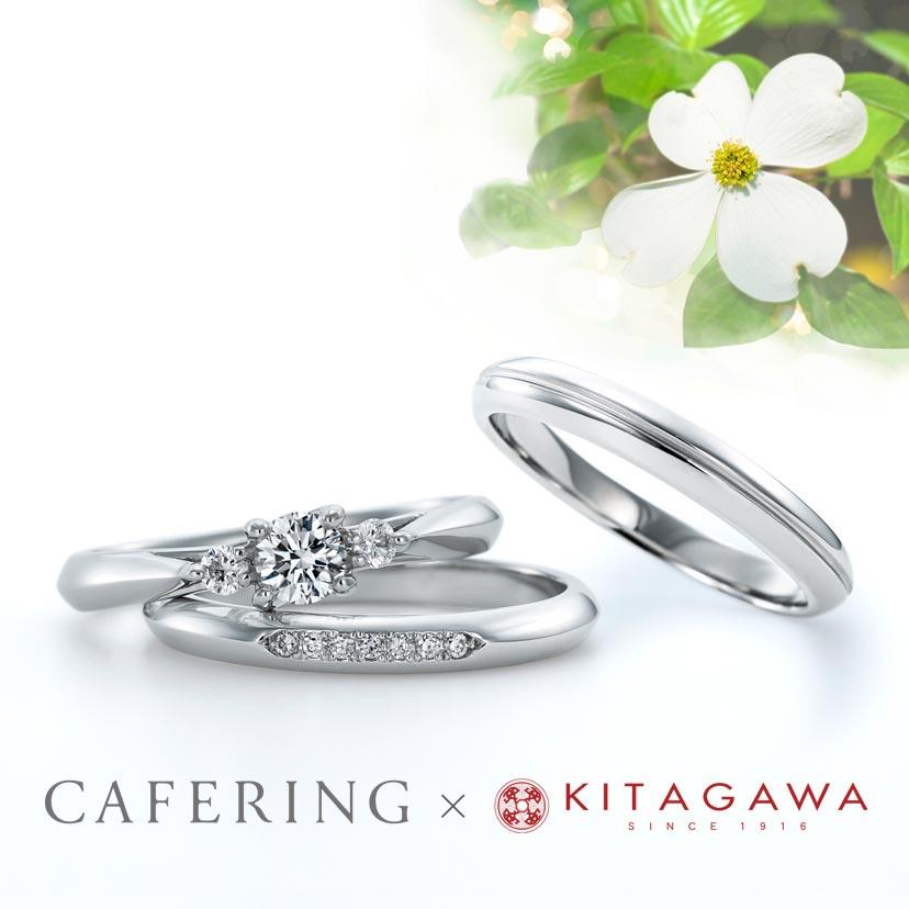 ハナミズキ 静岡KITAGAWA Bridal