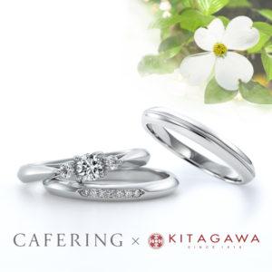 CAFERING 静岡KITAGAWA Bridalコラボレーションリング【ハナミズキ】